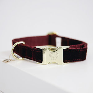 Halsband Kentucky corduroy bordeaux